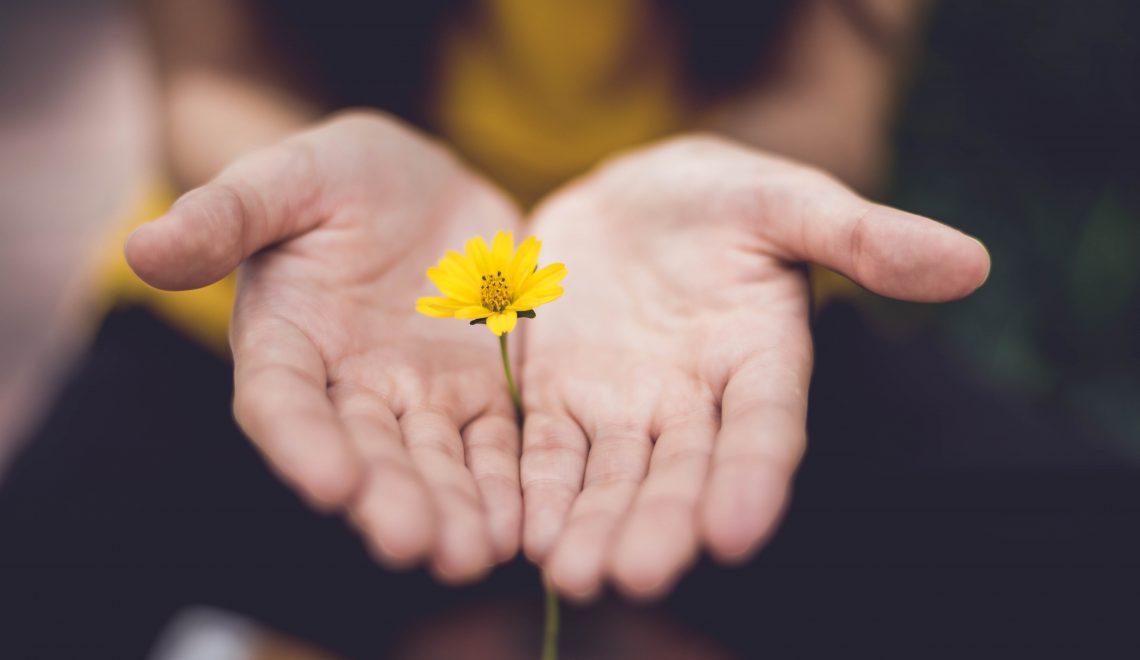 Przebaczenie dynamiką komunikacji